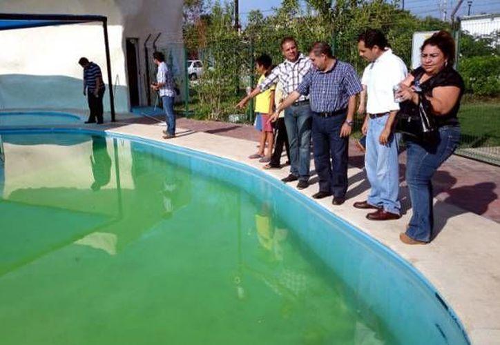 En un descuido de su madre, un menor de 2 años cayó en una piscina de un predio en Oxkutzcab y falleció por ahogamiento. (Foto de contexto/SIPSE)