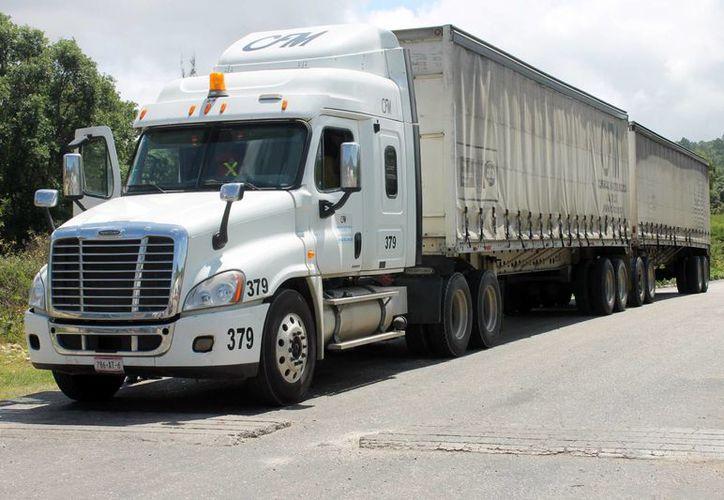 Se decretó la obligación de contar con frenos ADS de última tecnología, sincronizados con los remolques y la obligación de portar GPS para los camiones de doble remolque. (Archivo/Agencias)