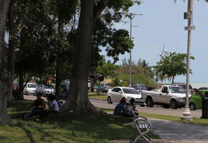 La canícula en Quintana Roo podría abarcar incluso meses en los que la temperatura no es tan calurosa. (Ángel Castilla/SIPSE)