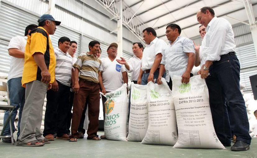Apicultores de Ticul reciben apoyos de manos del gobernador Rolando Zapata. (SIPSE)