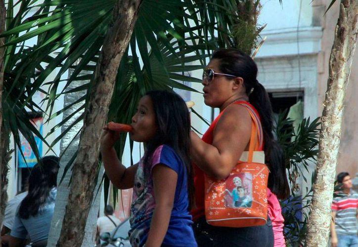 Las temperaturas de más de 40 centígrados que se registran en Mérida causan estragos en la salud de los habitantes: se reportó el segundo caso de 'golpe de calor'. (José Acosta/Milenio Digital)