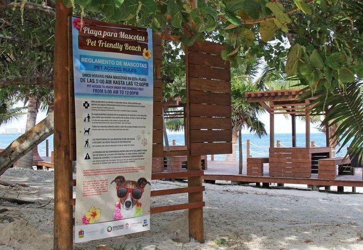 La nueva playa con Blue Flag de Cancún sería Coral y que además es Pet Friendly.  (Jesús Tijerina/SIPSE)