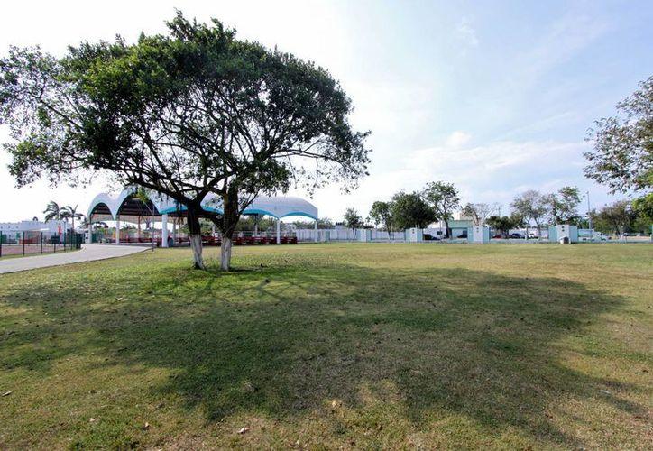 En este espacio se piensa construir el parque para mascotas en Cozumel. (Gustavo Villegas/SIPSE)