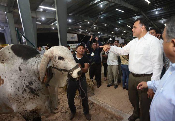 Entregan y anuncian en la Expo Feria Tizimín más apoyos para productores y ganaderos yucatecos. (Fotos cortesía del Gobierno de Yucatán)