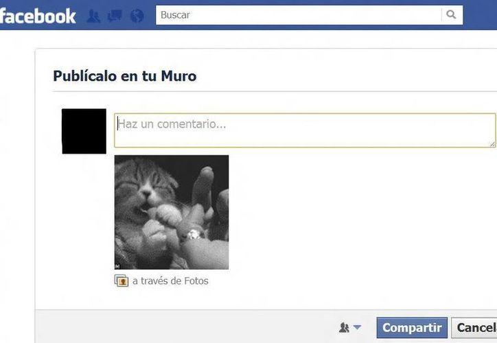 En sus inicios Facebook se negó a utilizar GIFs para no parecerse a MySpace. (Agencias)