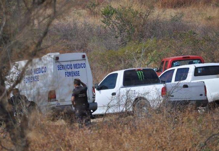 Todavía se desconoce la identidad de los cadáveres encontrados en los enterramientos clandestinos. (themexicantimes.mx)