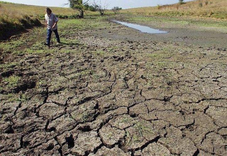 Los científicos estadounidenses consideran que las zonas del sur del país sufrirán una sequía de dimensiones nunca antes conocidas. (Archivo/AP)