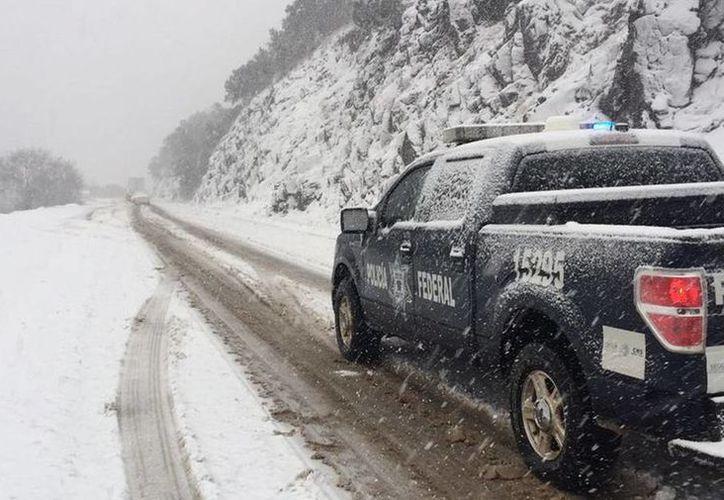 La Unidad Estatal de Protección Civil de Sonora informó de nevadas en los tramos carreteros Ímuris-Cananea y Agua Prieta-Janos, en los cuales recomendó precaución a los automovilistas. (Notimex)
