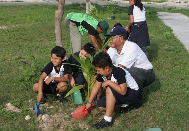 Escuelas tanto públicas como privadas deben involucrarse en actividades de educación ambiental. (Redacción/SIPSE)