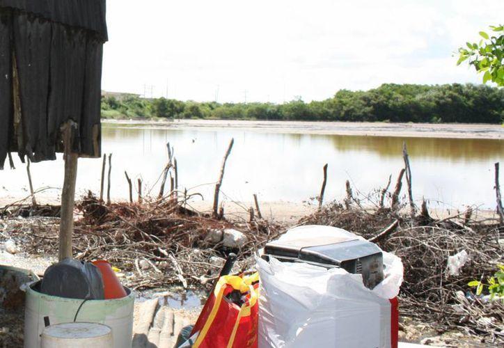 Los predios en la ciénega de Progreso y lugares con agua se venden. (Milenio Novedades)