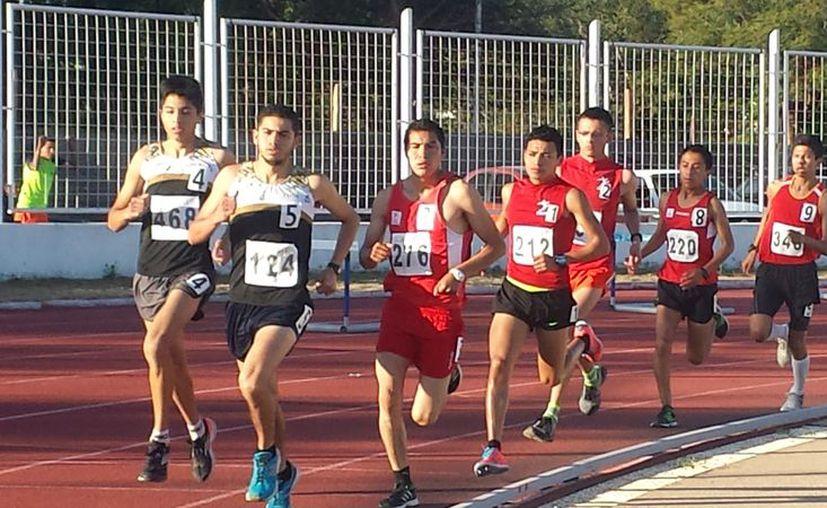 Continúan las actividades de la olimpiada nacional en diferentes estados. (http://www.fmaa.mx)