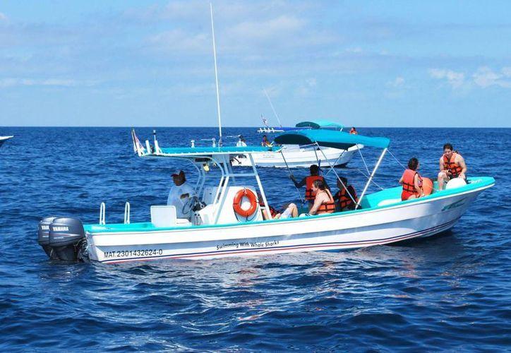 Promueven la conservación del tiburón ballena entre los prestadores de servicios turísticos. (Tomás Álvarez/SIPSE)