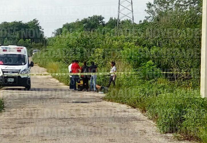 El área fue acordonada por las autoridades municipales. (Eric Galindo/ SIPSE)