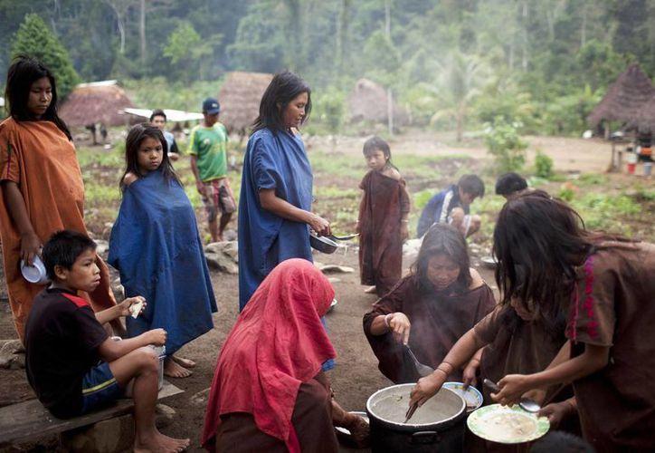 Viven en un valle que es el mayor productor mundial de hoja de coca, entre traficantes y taladores ilegales. (Agencias)