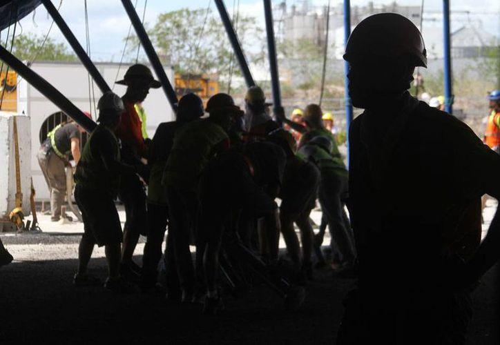 Unas 60 personas 'pusieron en el aire' la Gran Carpa Blanca del Cirque du Soleil en la que se presentará en espectáculo 'Corteo', en Mérida. (César González/SIPSE)