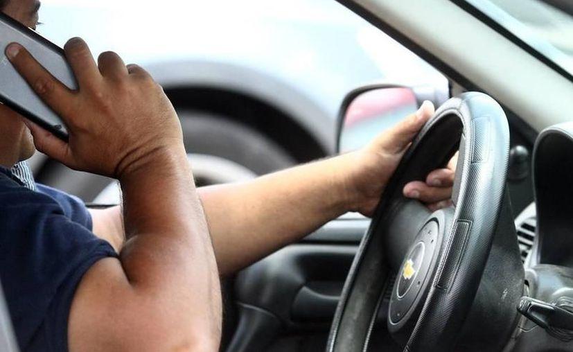 Usar el teléfono al manejar es la primera causa de accidentes en el Centro de la ciudad.  (Archivo/ SIPSE)