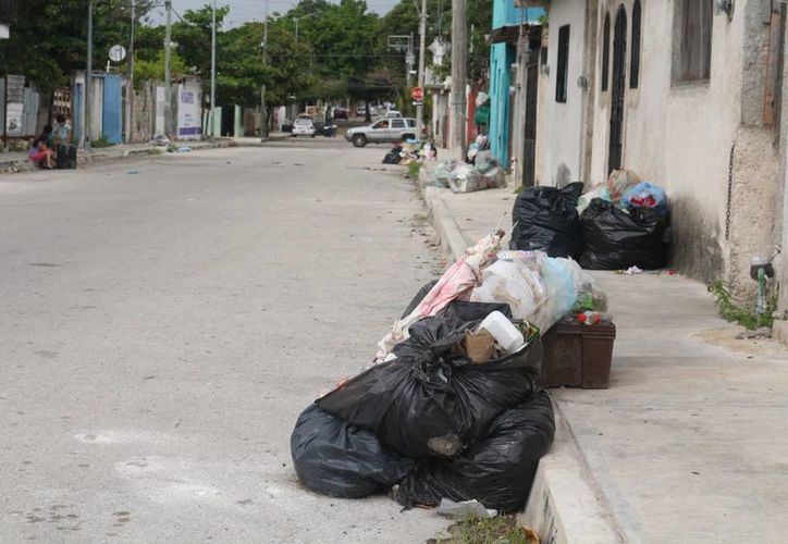 Habitantes de la colonia Colosio denuncian la falta de recolección de basura desde el 26 de diciembre. (Adrián Barreto/SIPSE)