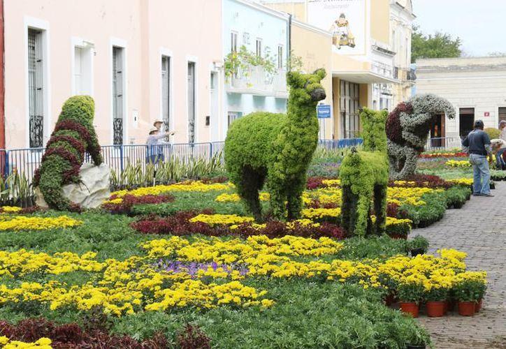 Para su elaboración se plantaron más de un millón de flores. (Foto: Redacción/SIPSE).