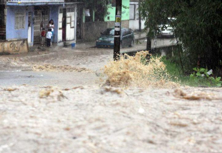 El río Carneros, que atraviesa la popular colonia San Bruno en Xalapa, se salió de cauce y provocó la inundación de viviendas asentadas en la parte baja. (Notimex)