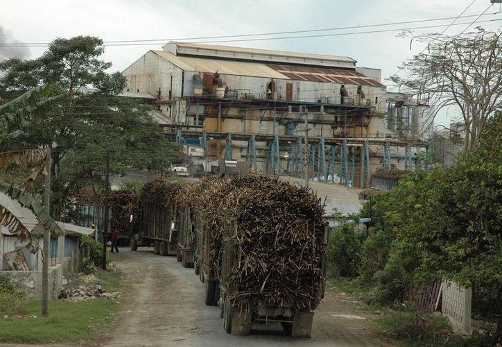 Hay un desequilibrio que solo con una modificación al Tratado podría ayudar a la industria azucarera. (Juan Rodríguez/ SIPSE)