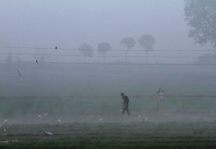 La intensa niebla obliga a suspender actividades aeroportuarias. (Agencias)
