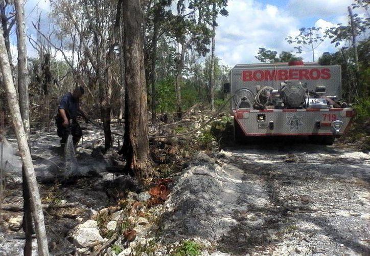 A finales del mes de abril el cuerpo de socorro llegó a atender tres incendios diarios. (Octavio Martínez/SIPSE)