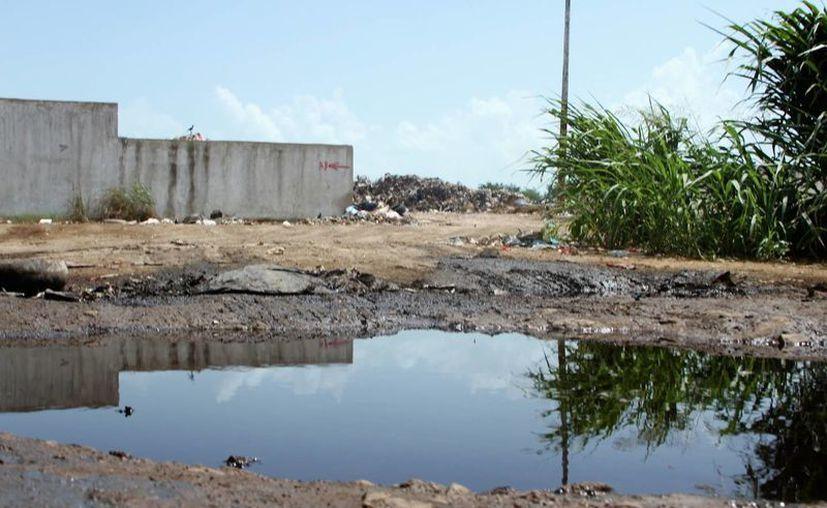 El líquido de la basura es frenado por un pequeño montículo de terracería. (Carlos Horta/ SIPSE)