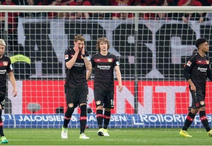 Schalke 04 alcanza los 41 puntos, mientras que Bayer Leverkusen se estanca en la doceava posición con 36 unidades. (@bayer04_es).