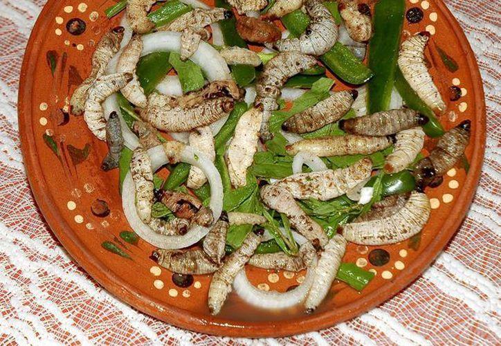 Los gusanos de maguey sólo requieren un poco de aceite para cocinarlos. (portal.veracruz.gob.mx)
