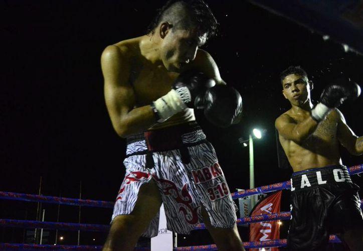 Eduardo Torres regresó al ring, luego de sufrir su primera derrota hace algunos meses.(Daniel Sandoval/Milenio Novedades)