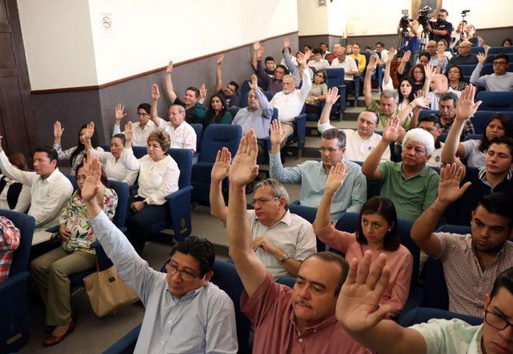 La licenciatura en Geografía Aplicada fue aprobada por el Consejo Universitario.
