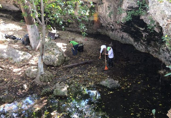El cenote de la Región 100 de Cancún no tiene el agua contaminada. (Redacción/SIPSE).