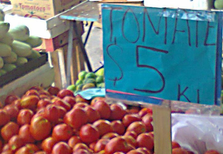 El tomate tiene baja demanda en el mercado a pesar de su precio. (Harold Alcocer/SIPSE)