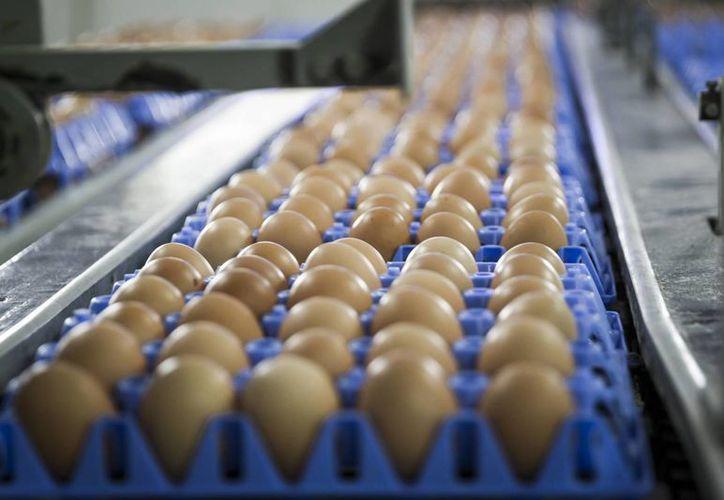 Por mucho tiempo los huevos fueron considerados malos para el corazón, pero los médicos ya no piensan lo mismo ahora. (elpais.com)
