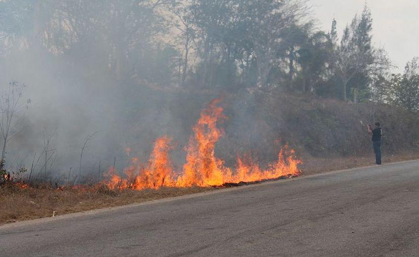 La Conafor atiende incendios donde se ponen en riego a macizos forestales. (Foto: Juan Rodríguez)