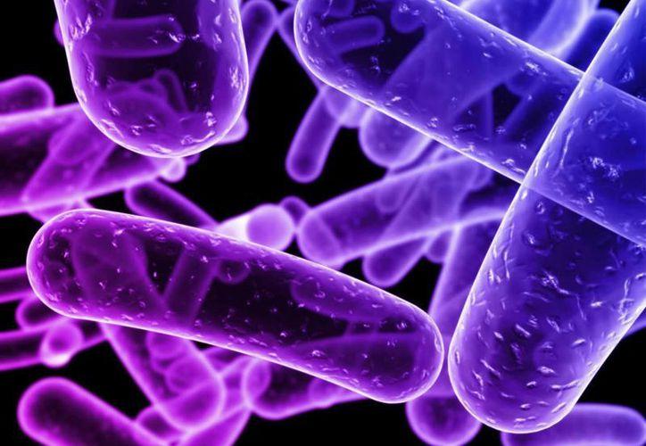 Señalan que estas infecciones son casi imposibles de tratar.(dgcs.unam.mx)