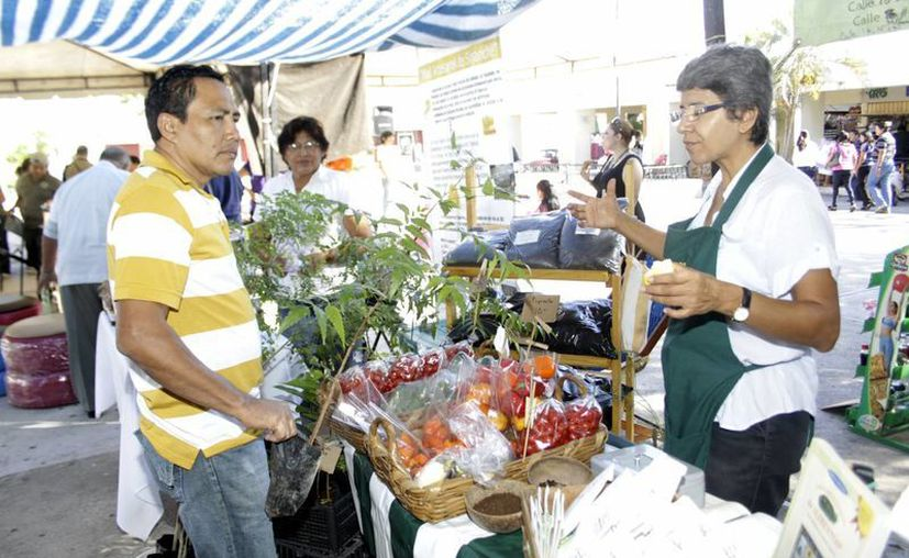 En Mérida existe un tianguis especializado en la venta de productos orgánicos. (Ayala/SIPSE)