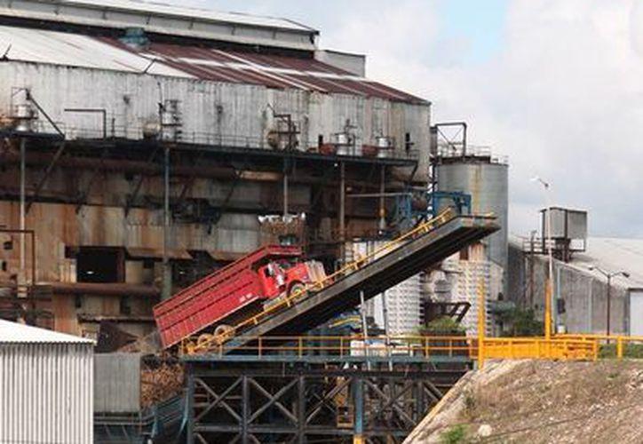 Desde la mañana de ayer, los camiones de carga comenzaron a entregar la materia prima al batey. (Edgardo Rodríguez/SIPSE)