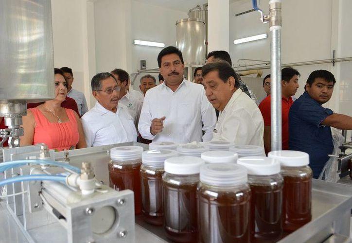 La miel de Yucatán pone en alto el nombre del estado, por la calidad de la producción y el ritmo de crecimiento del sector, manifestó el titular de la Secretaría de Desarrollo Rural (Seder), Juan José Canul Pérez. (Centro)(Foto cortesía del Gobierno de Yucatán)