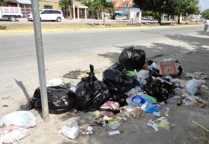 Las autoridades van contra quienes arrojan sus desperdicios en vía pública, después del paso de los camiones recolectores tulumnenses. (Rossy López/SIPSE)