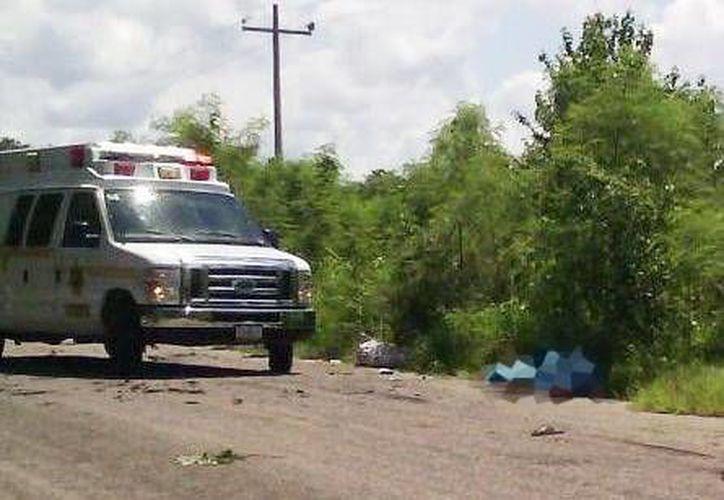 El cuerpo del campesino quedó tirado a un lado de la vía. El conductor se dio a la fuga con todo y vehículo. (Milenio Novedades)
