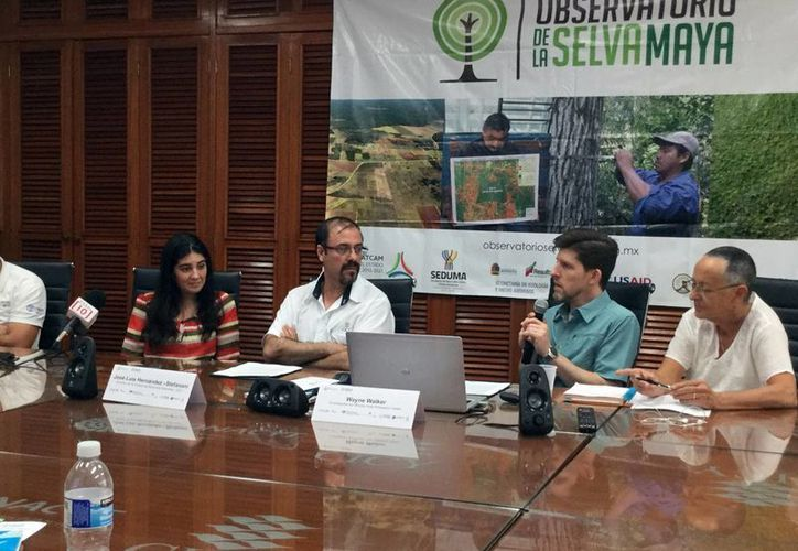 Especialistas de Estados Unidos informaron los resultados de los datos del observatorio de la selva maya. (Milenio Novedades)