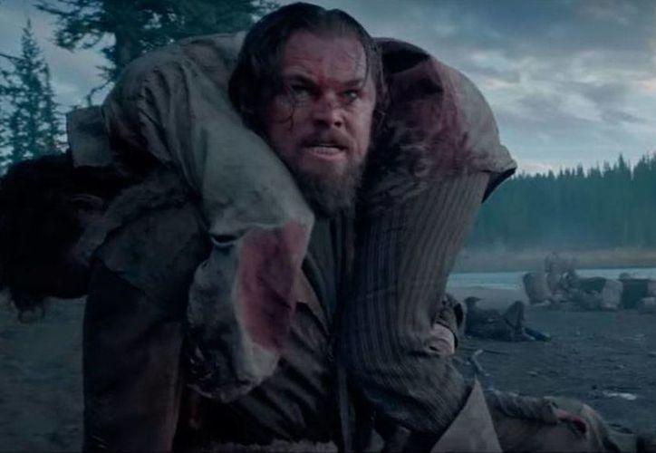 Leonardo Di Caprio protagoniza The Revenant, del mexicano Alejandro González Iñárritu. (YouTube/20th Century Fox)