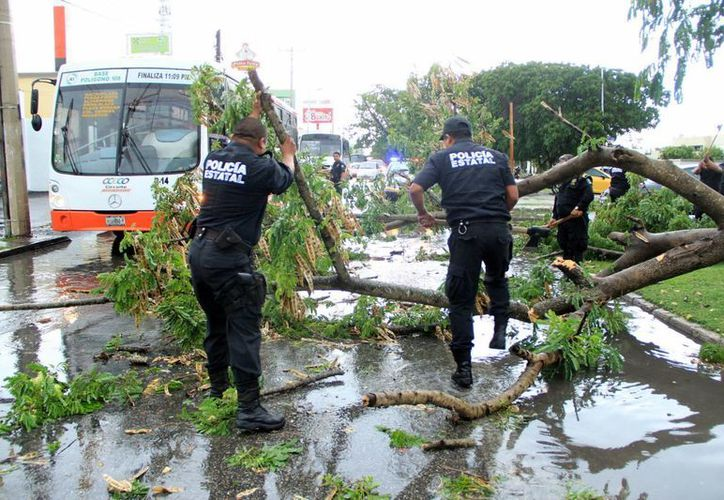 Agentes de la SSP retiran ramas sobre Avenida Tecnológico. En el centro se tuvo que bogar agua. (Jorge Peña/SIPSE)