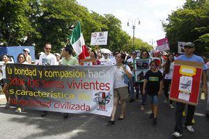 Yucatecos marchan por la vida animal