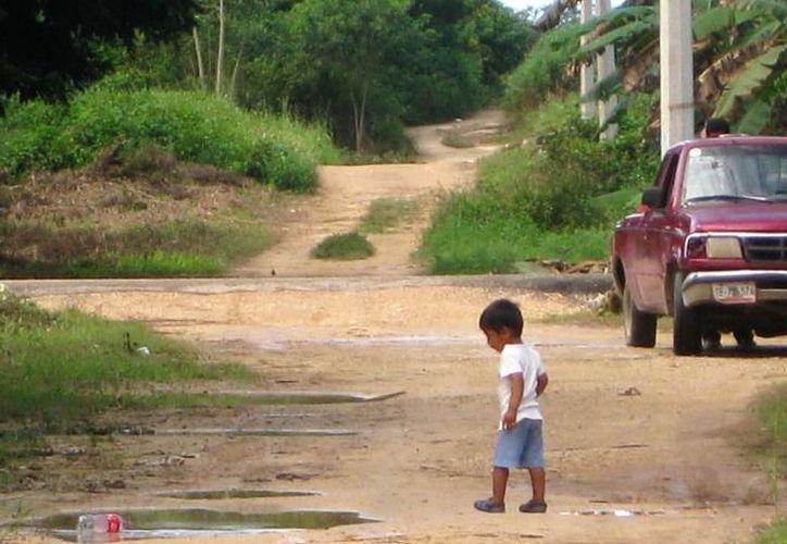 Habitantes de comunidades rurales de Chetumal combaten a los mosquitos con humo, ya sea basura, cartones o de 'killer'. (Alejandra Carrión/SIPSE)