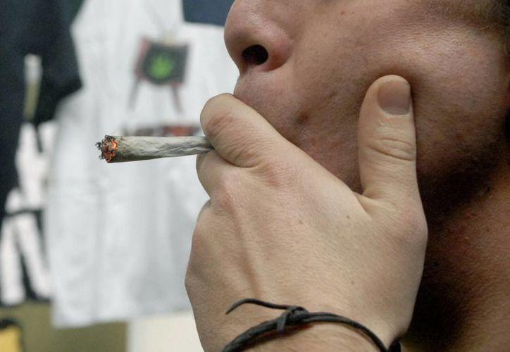 Con anterioridad, la posesión de hasta 8 gramos (0.28 onzas) de marihuana era punible con una condena carcelaria de seis a 24 meses. (Archivo/EFE)