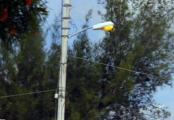 El jueves pasado inició el proceso de licitación de las lámparas de alumbrado público para Solidaridad. (Archivo/SIPSE)