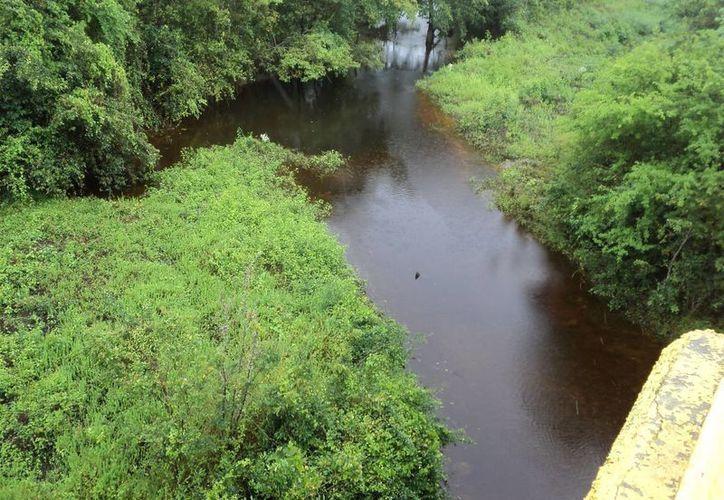 El caudal del Río Hondo no presenta variación considerable, está en su nivel normal 30 centímetros arriba. (Redacción/SIPSE)