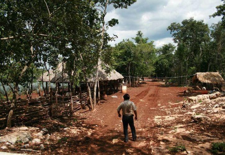 La Sedatu destinó recursos para que las comunidades rurales con debilidad financiera, se urbanicen.  (Foto de contexto/Internet)